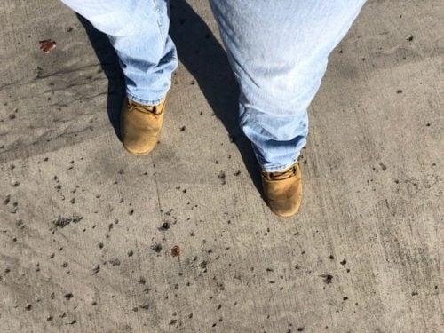 levis-527-slim-fit-boot-cut-jeans-review
